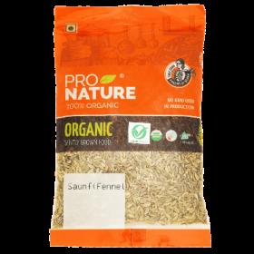 Pro Nature Organic Saunf (Fennel) 100 gms