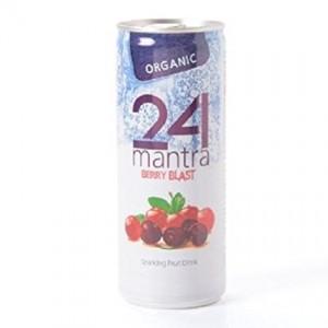 24 Mantra Organic KABULI CHANNA 500g ( vellakadala)